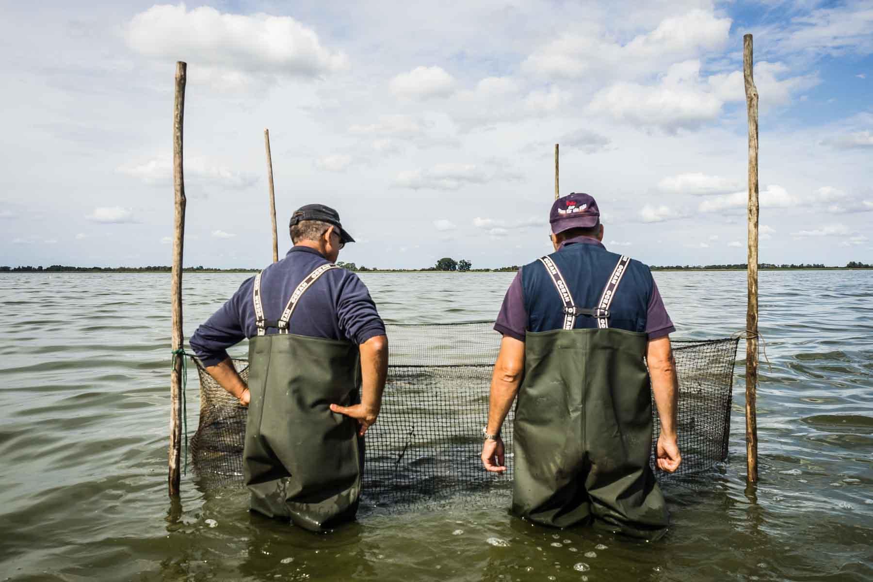 Fischgehege